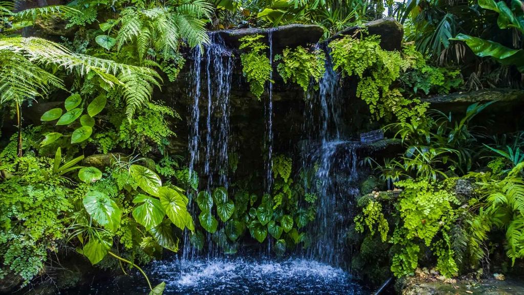 Moose Sunken Garden