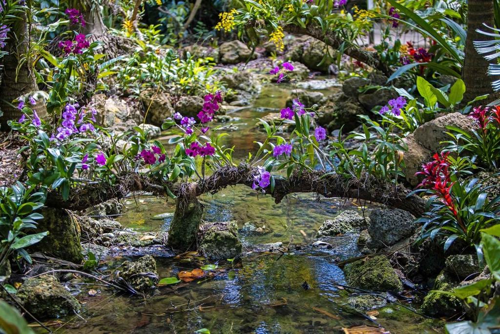 Richard H. Simons Rainforest