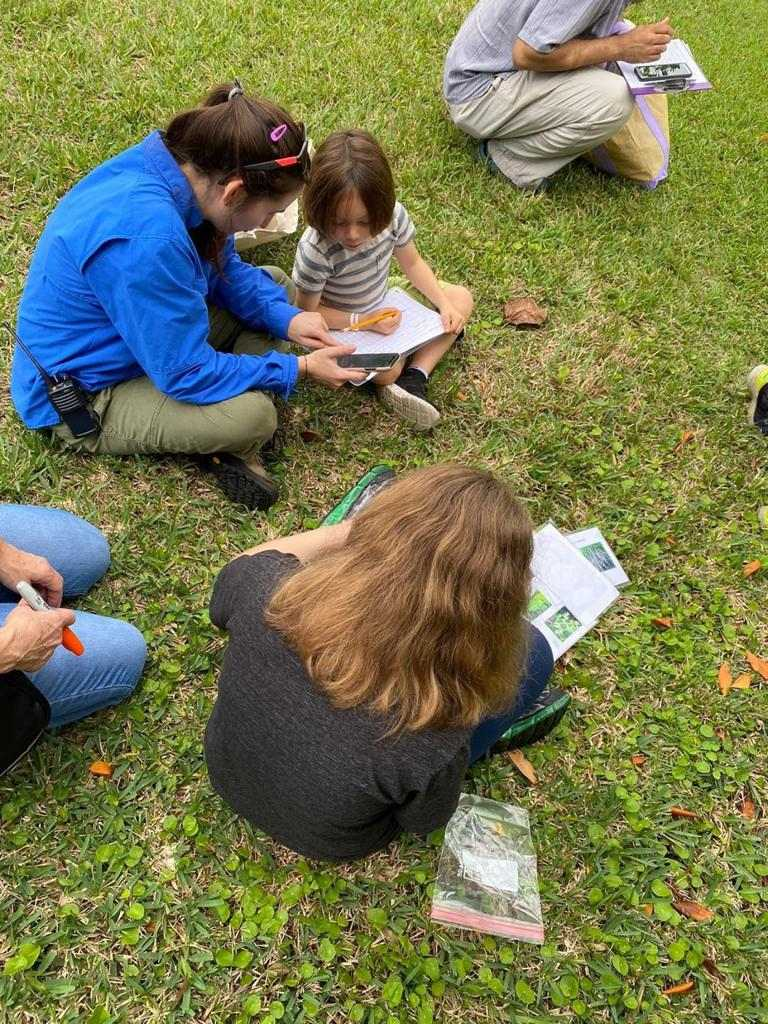 School Program Seedlings
