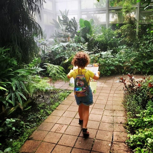 Come Explore...Spend Veterans Day at the Garden enjoying the fresh outdoor air as you take an adventure through paradise! Veterans get in Free! 😊 🇺🇸 . #fairchildtropicalbotanicgarden #discoverfairchild #fairchildgarden #beautifulplaces