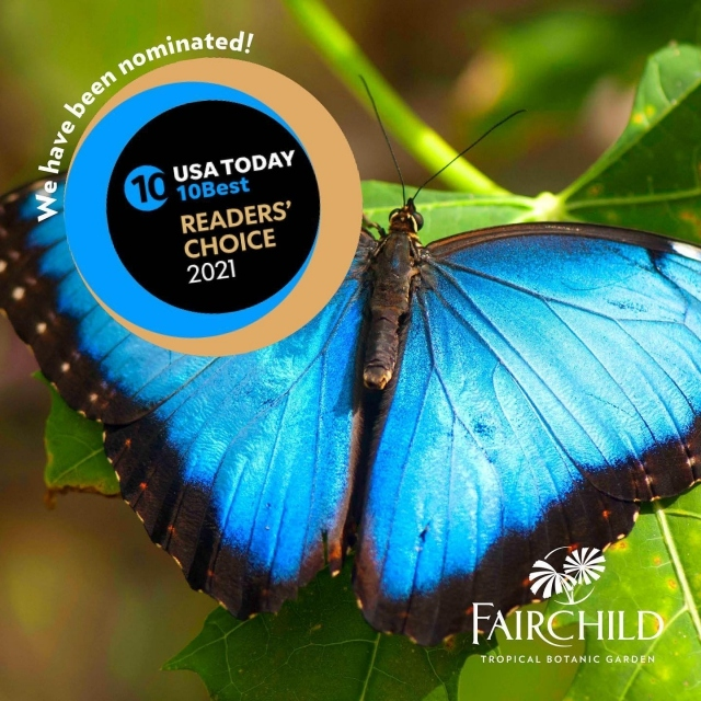We need your votes! Fairchild has been nominated in the 2021 10Best Readers' Choice travel awards! The expert panel selected Fairchild as a contender for Best Botanical Garden. You can vote every day for four weeks!  Help us get to #1! . LINK IN BIO TO VOTE! 😊